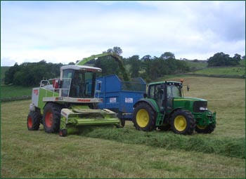 Silaging at Hoe Grange