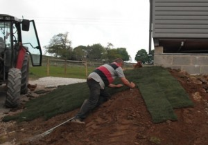 laying turf - with a little help from the hens!