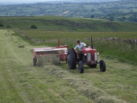Haymaking at Hoe Grange