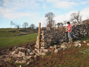 Dry stone walling is a real art