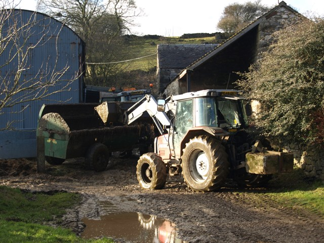 Filling the muck spreader in the yard