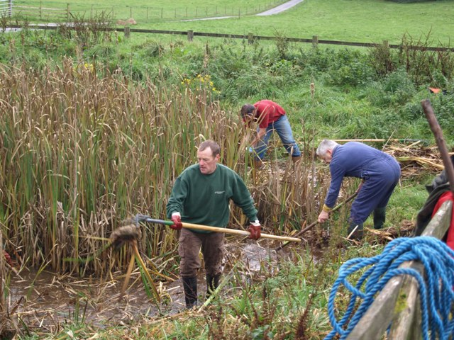 Members of  D.A.R.G clearing the pond at Hoe Grange