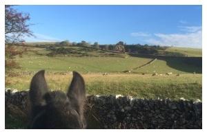 Horse riding Derbyshire