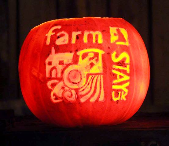 Farm Stay pumpkin