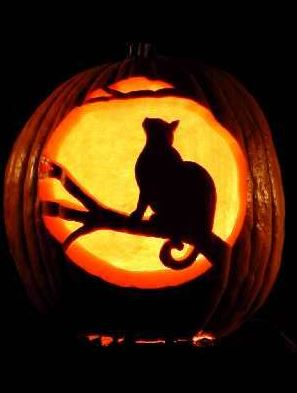 cat carved pumpkin