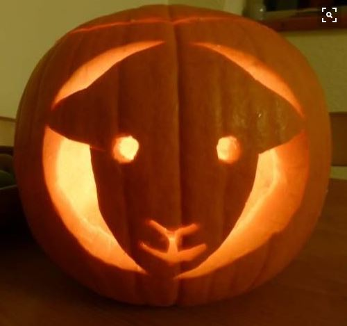 sheep carved pumpkin