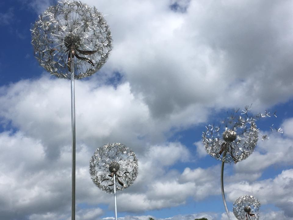 wire dandelion flower