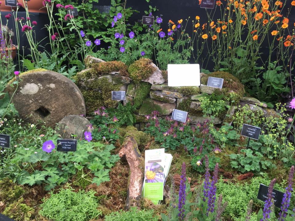 Tissington Nursery awarded Silver Gilt Medal