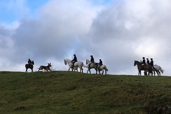Four Shires hunt