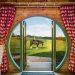 horse outside glamping pod
