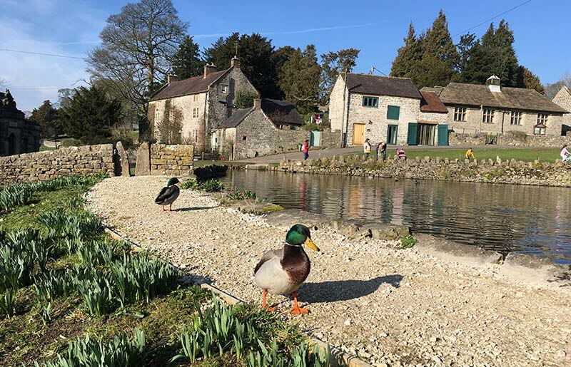 Tissington village pond