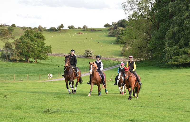 Take Your Horse on Holiday cantering