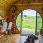 take you dog on holiday glamping