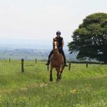 Bring Your Horse on Holiday local bridleways