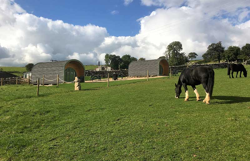 Riding holidays with glamping pods