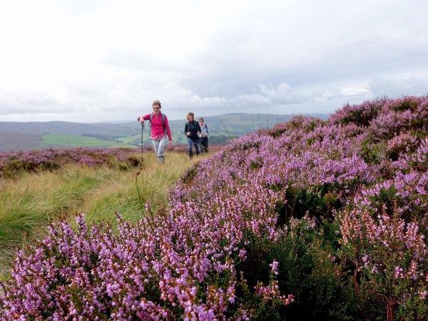 Bleaklow Moor Derbyshire