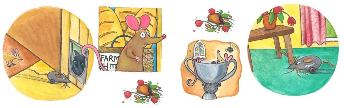 Illustrations by Liz Furness