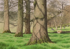 Watercolour painting by artist Roger Allen