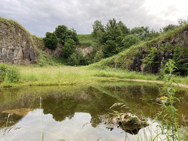 Hoe Grange wild nature reserve
