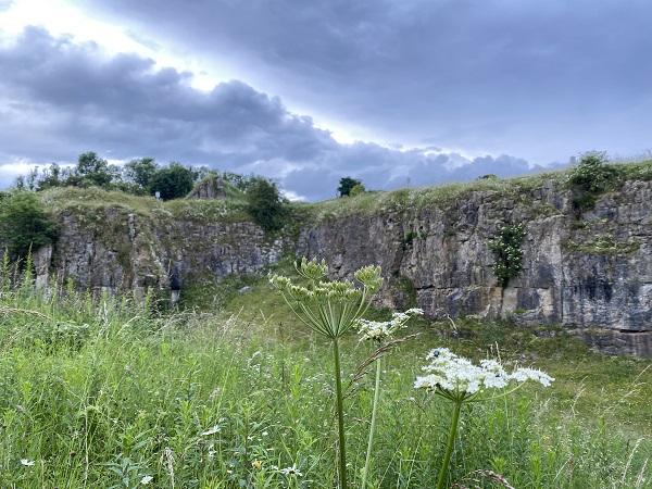 Hoe Grange Quarry